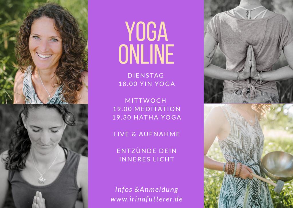 Yoga Online, Onlinekurse Yoga, Hatha Yoga online
